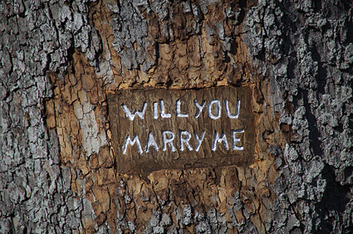 will-you-marry-me1